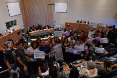2019.12.12_Votacao-da-LDO_fotos-Deva-Garcia-1