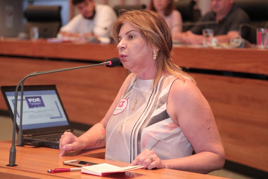 2018.08.29 - Audiencia Publica do PDE_fotos ECOM (23)