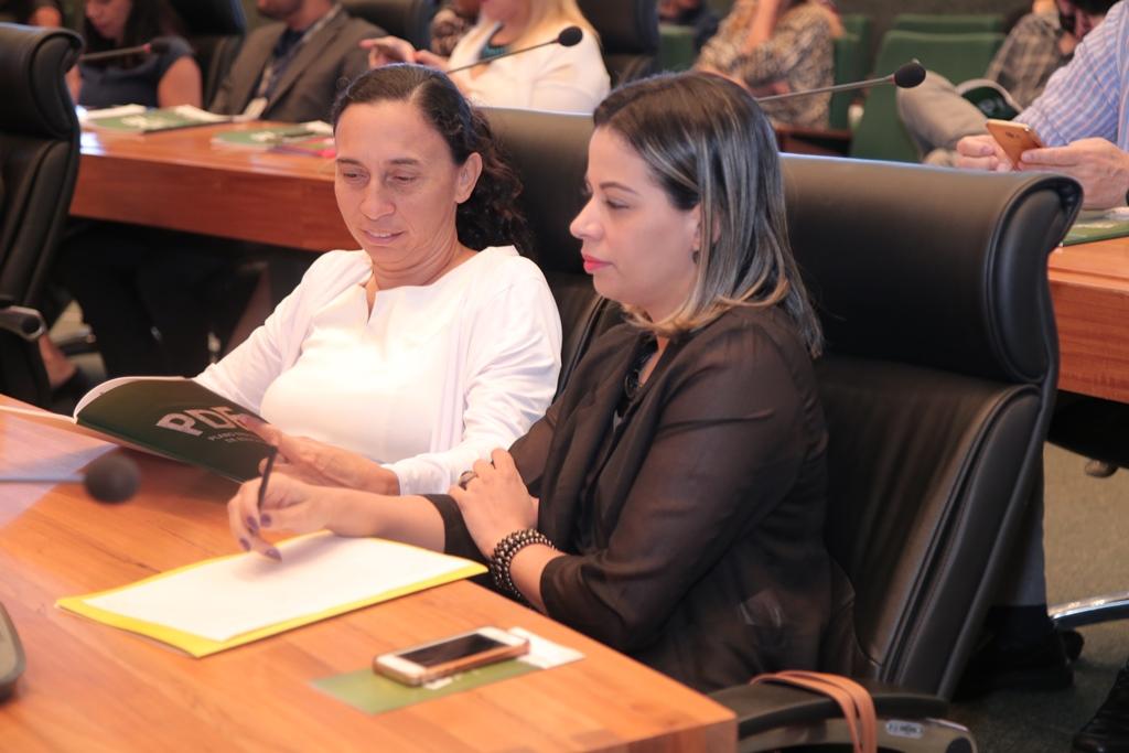 2018.08.29 - Audiencia Publica do PDE_fotos ECOM (68)
